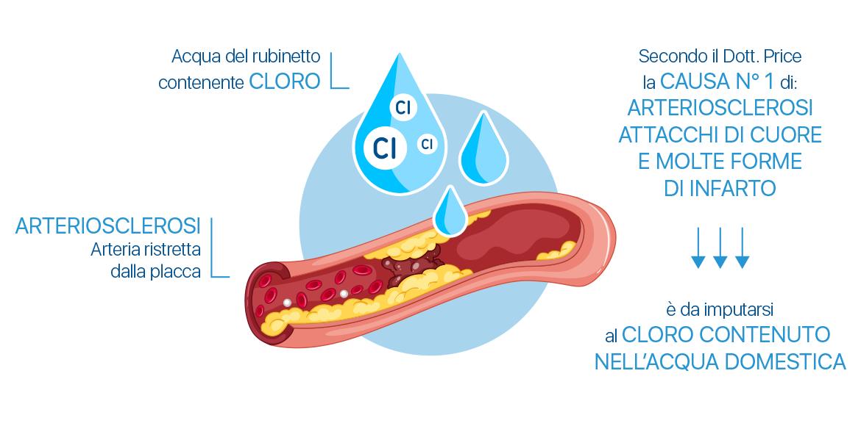 Cloro causa di arteriosclerosi, infarto, colesterolo
