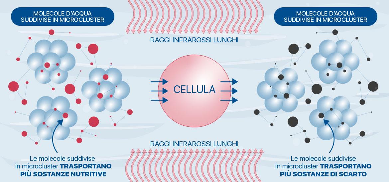 Azione dei Raggi infrarossi lunghi sulle molecole d'acqua - Meglio in Salute
