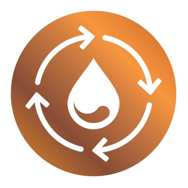 Ginseng per aiutare a migliorare la circolazione sanguigna