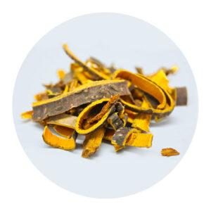 plantari-piante-officinali-Conifera-gialla-meglio-in-salute