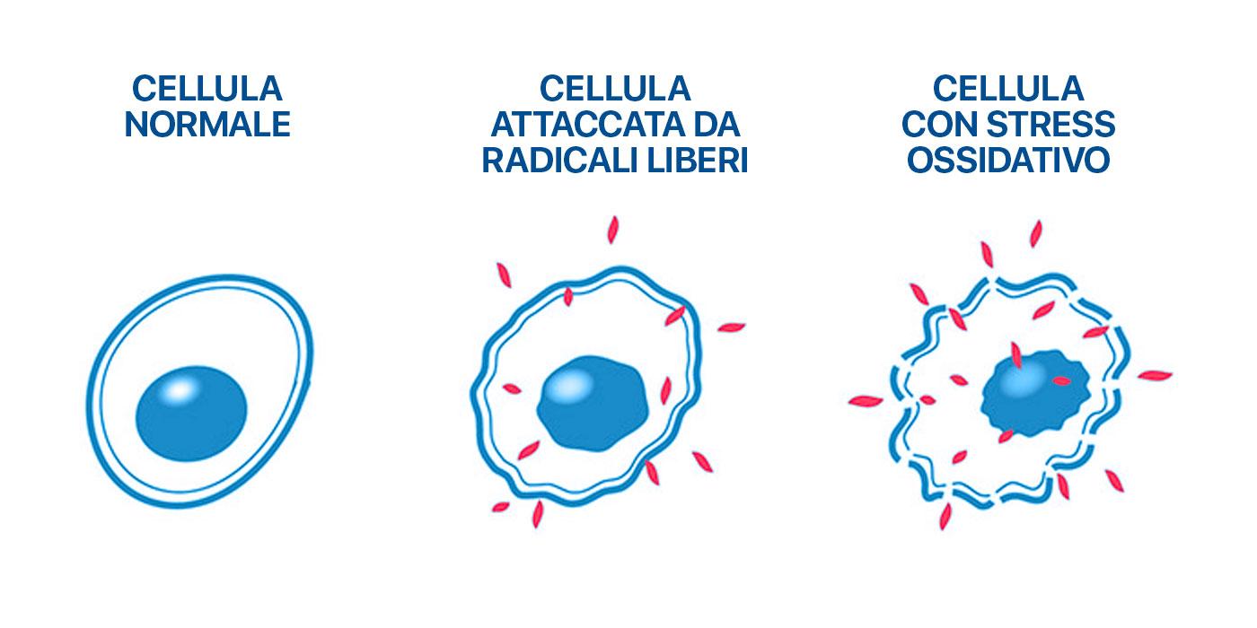 stress-ossidativo-ionizzatore-multifunzione-meglio-in-salute